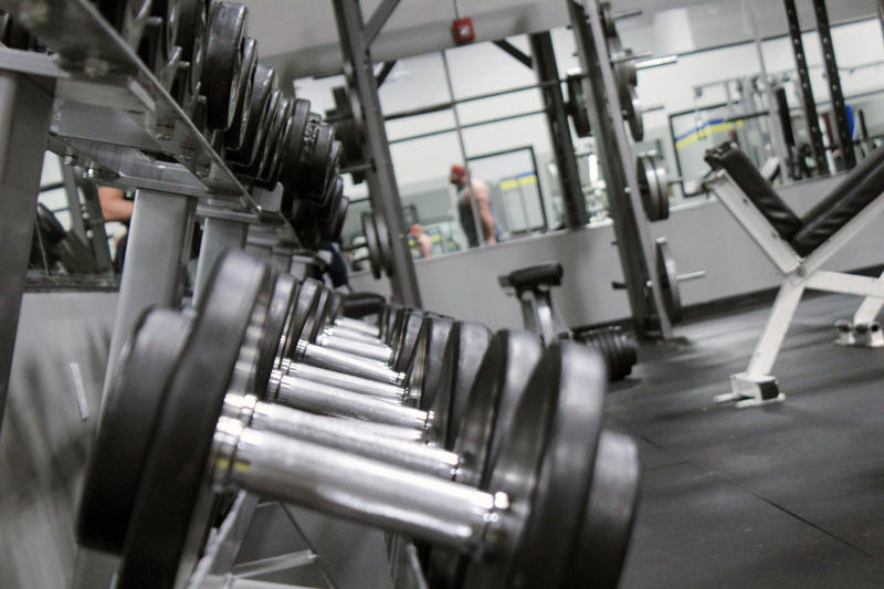 row of dumbells on a rack